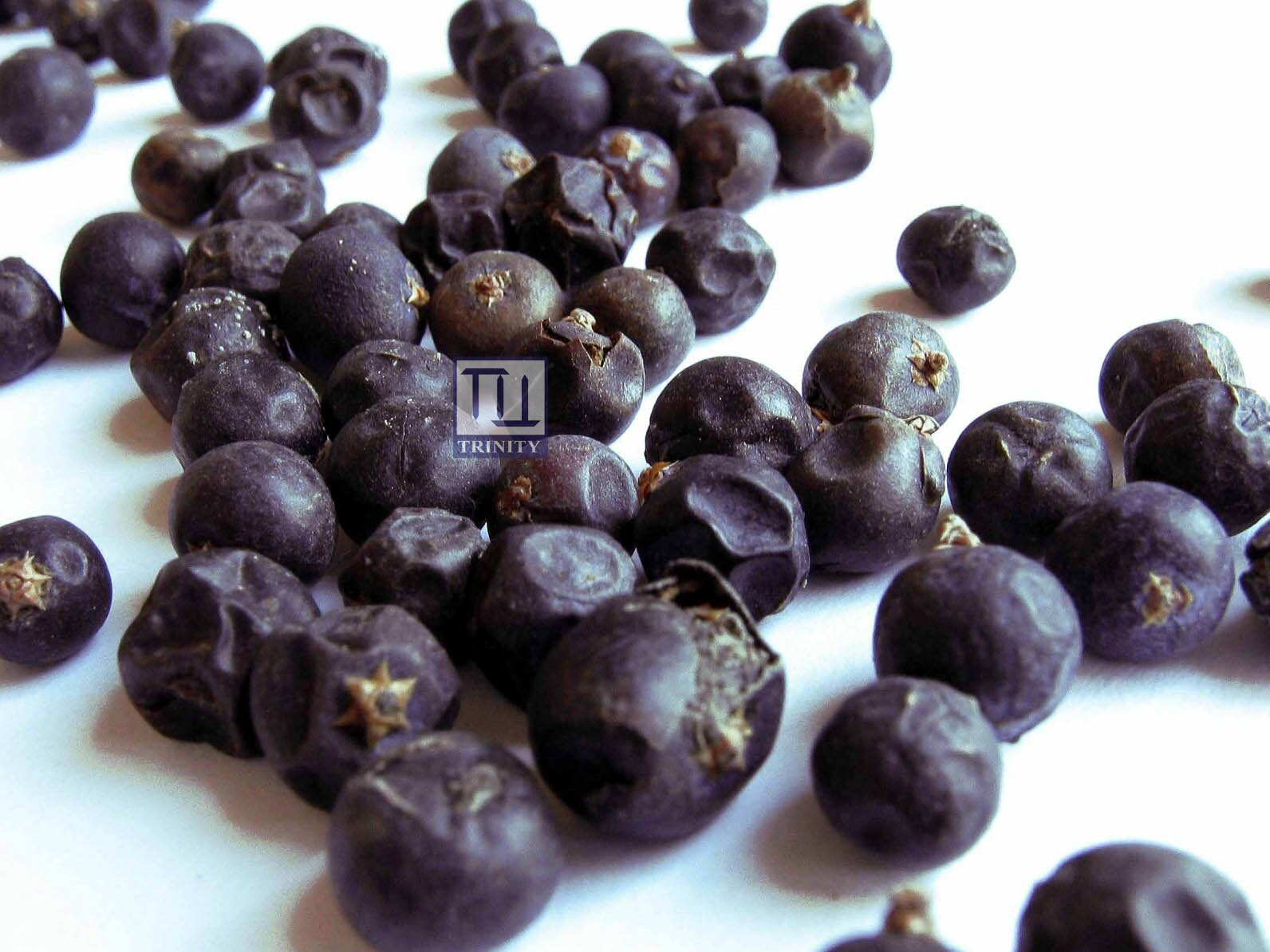 Juniper Berry 杜松子