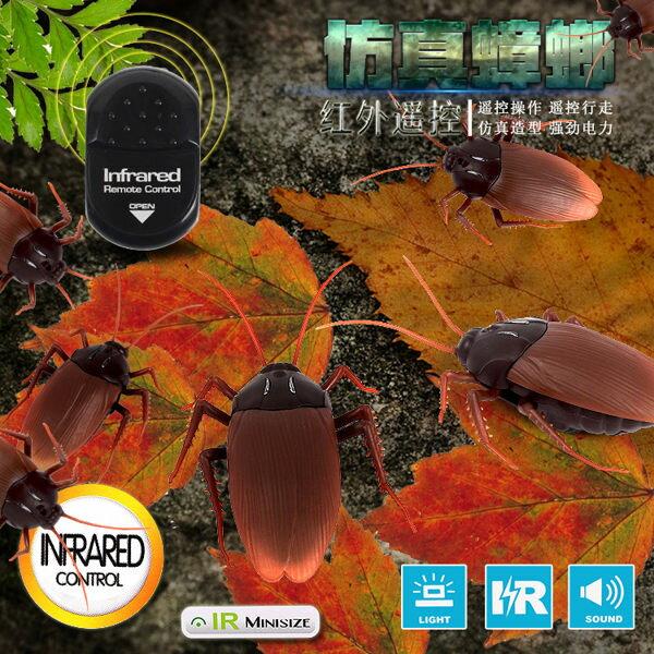 紅外線遙控蟑螂玩具仿真禮物整人惡作劇電子寵物有趣【庫奇小舖】