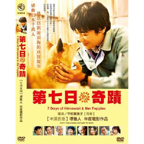 第七日的奇蹟DVD堺雅人中谷美紀