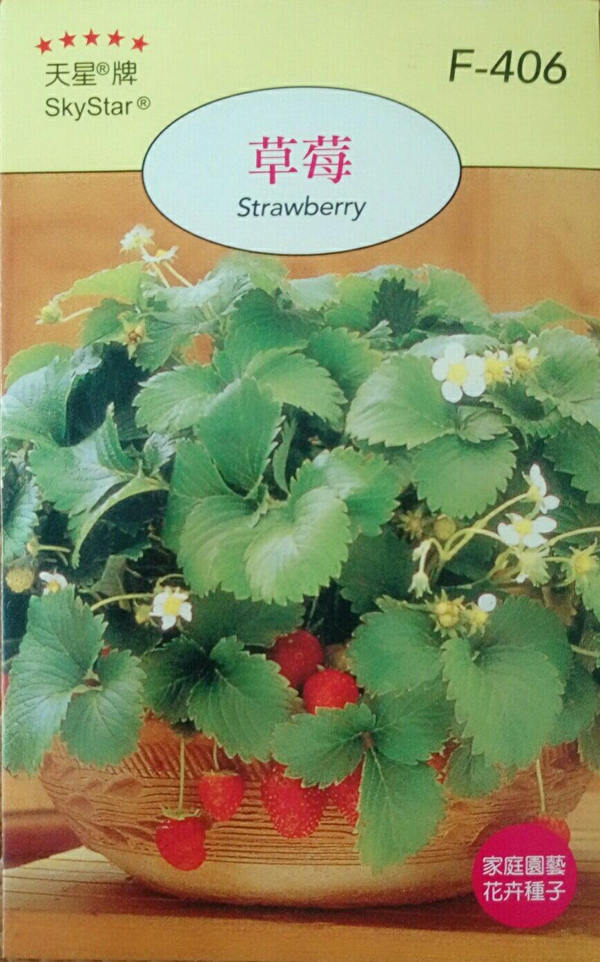 【尋花趣】天星牌 草莓 花卉種子 每包約180粒 保證新鮮種子