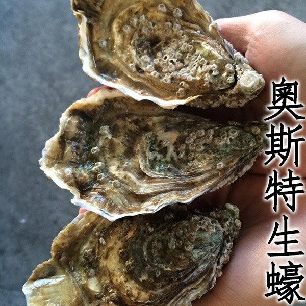 ㊣盅龐水產 ◇奧斯特生蠔(法國)◇超新鮮高品質生蠔 蛤蠣 貝 烤肉 刺身 生蠔 餐廳 批發 團購