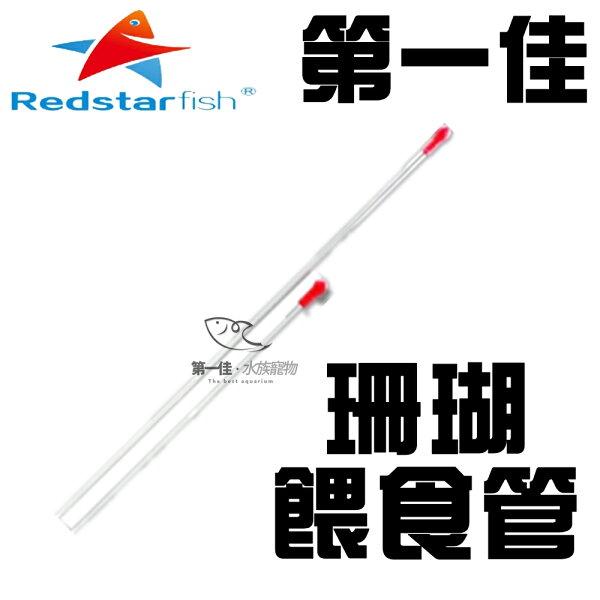 [第一佳水族寵物]紅海星REDSTARFISH珊瑚餵食管