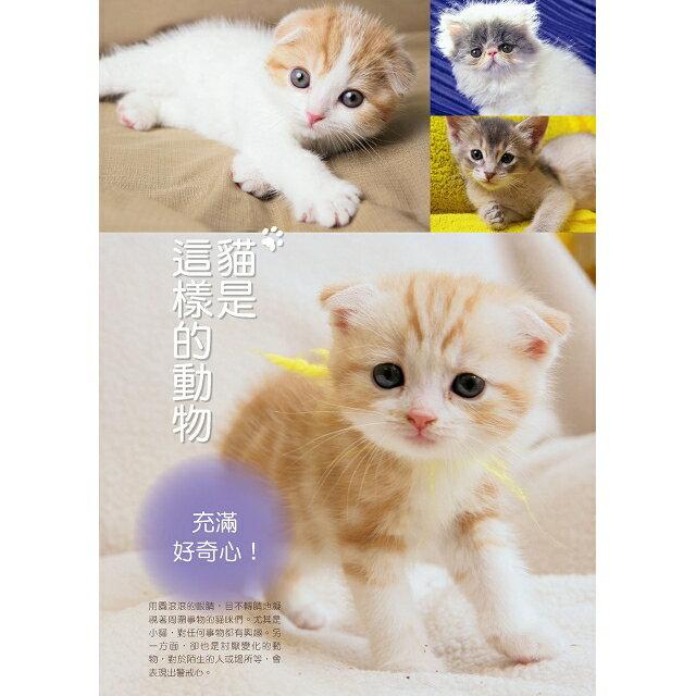 新手養貓必備書  暢銷版 1
