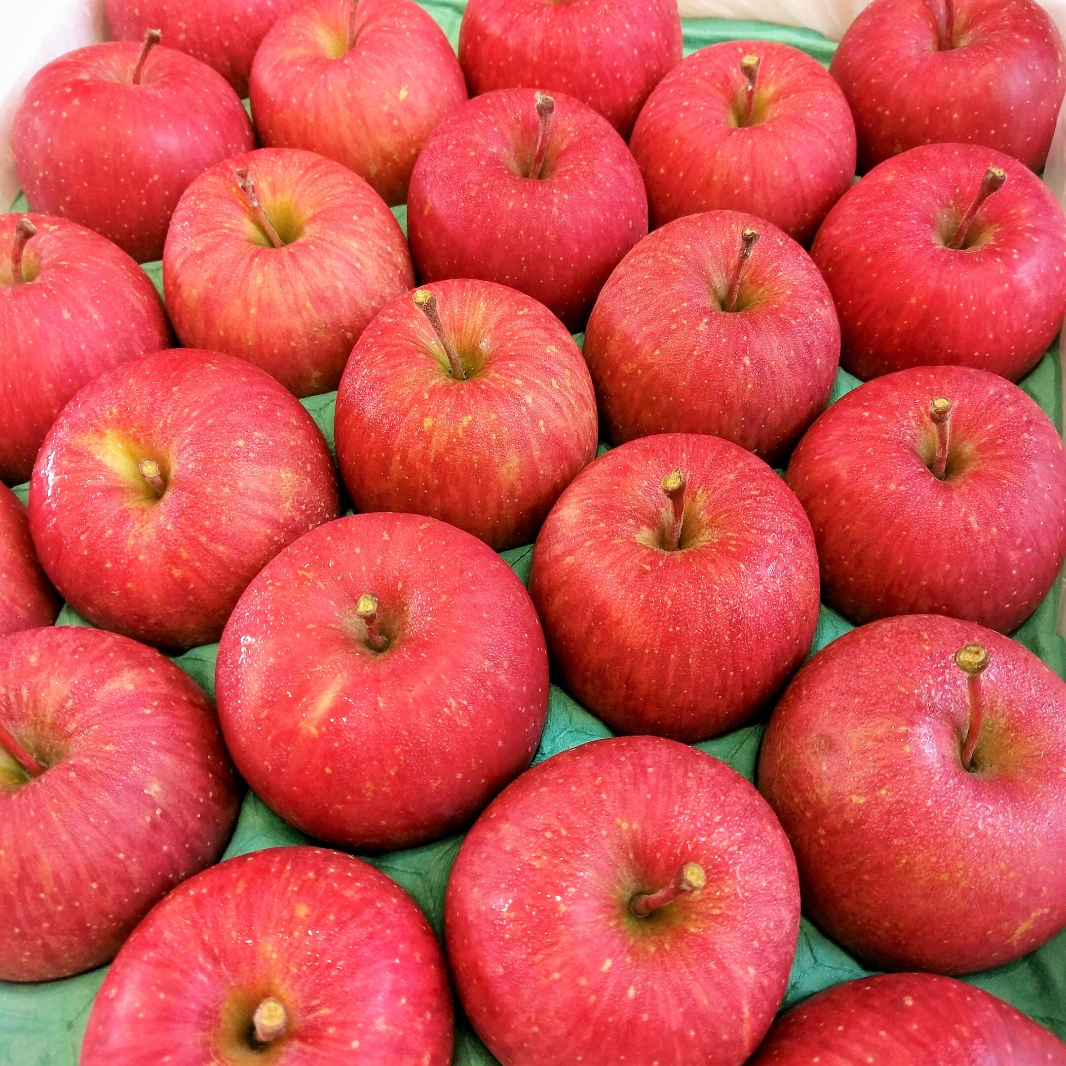 日本青森縣‧特選‧富士蜜蘋果