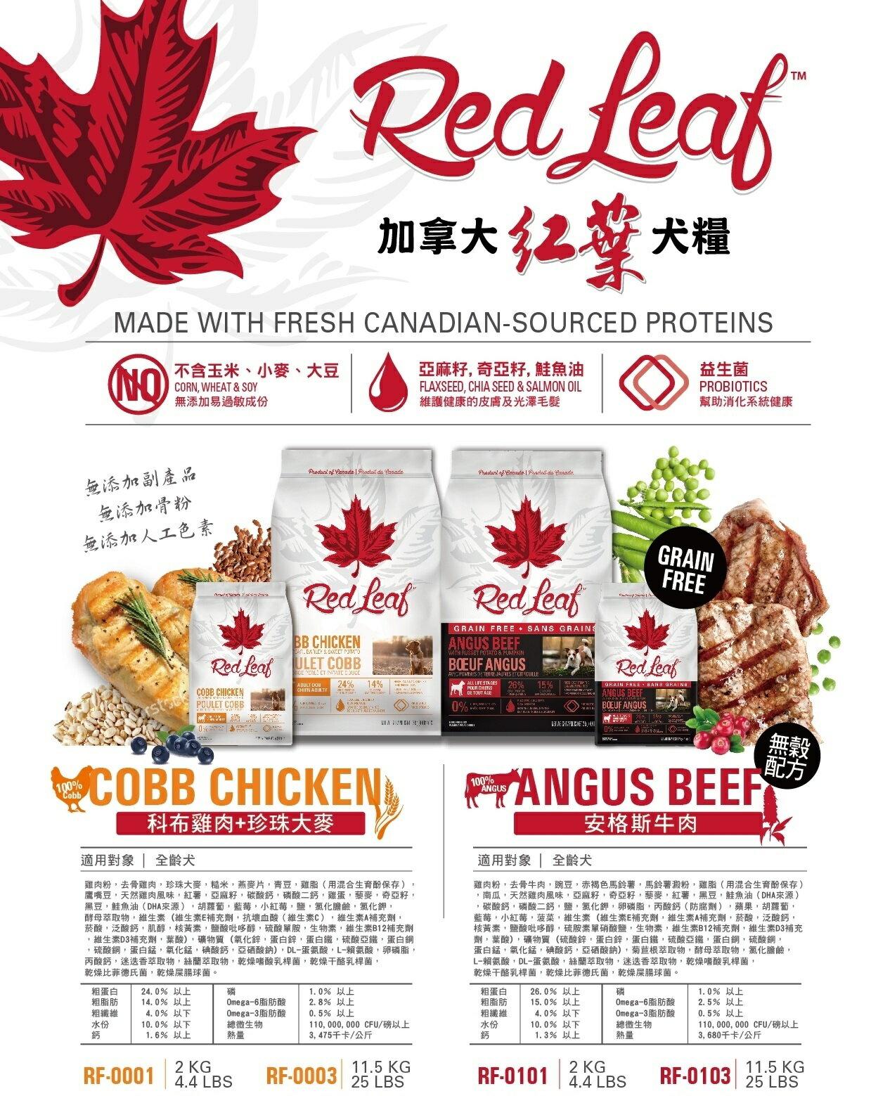 加拿大紅葉 Redleaf- / 天然犬糧雞肉+大麥 / 無穀犬糧安格斯牛肉 / 狗飼料-2kg 1
