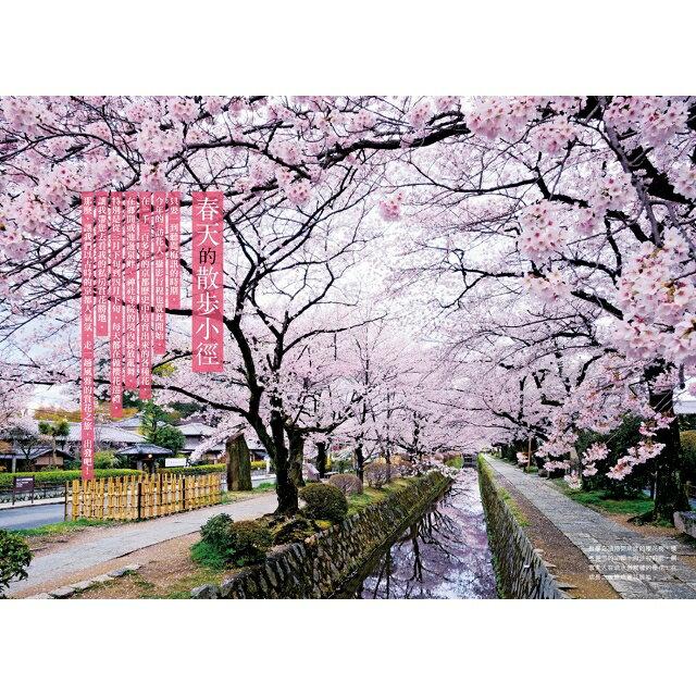 最美的京都,你都見過了嗎?攝影名家的私房散策路線:春櫻夏水篇 2