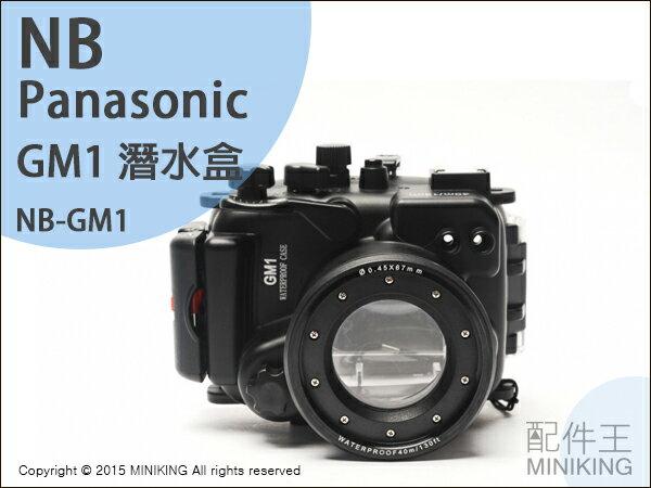 【配件王】現貨 NB公司貨 Panasonic GM1 潛水殼 潛水盒 相機防水 潛水殼罩 浮潛 防水殼 另售 GF6