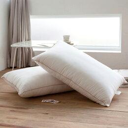 四孔透氣舒柔枕2入