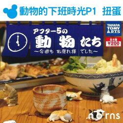 【T-ARTS扭蛋 動物的下班時光P1】Norns 日本轉蛋 狗狗貓咪 鬥牛犬虎斑貓  公仔 立體模型 桌上型玩具 趣味擺飾 療癒 喝酒 慵懶