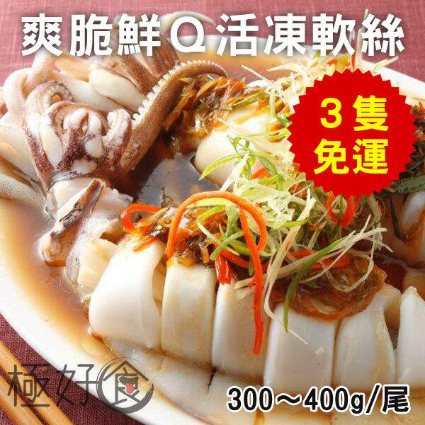 極好食❄【3隻免運】活凍軟絲-300-400g/尾【爽脆鮮Q】