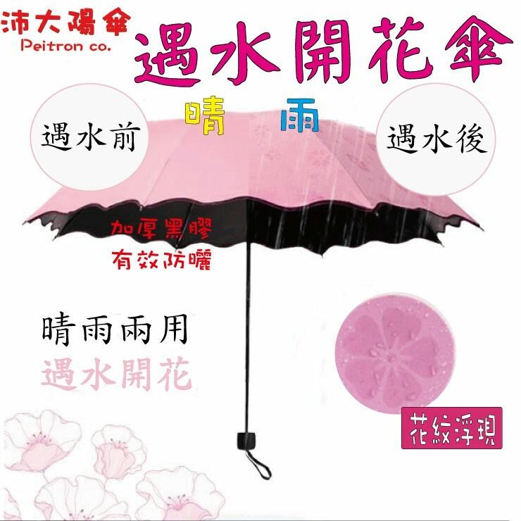 《沛大陽傘》遇水開花傘 內層黑膠6色可選~加厚傘布~歡迎團購遇水開花遇水雨傘迷你傘防風抗UV傘陽傘防曬傘折疊傘摺疊傘折傘