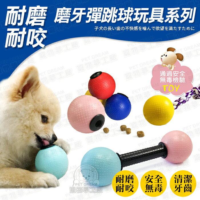 安全無毒益智漏食球玩具五入組