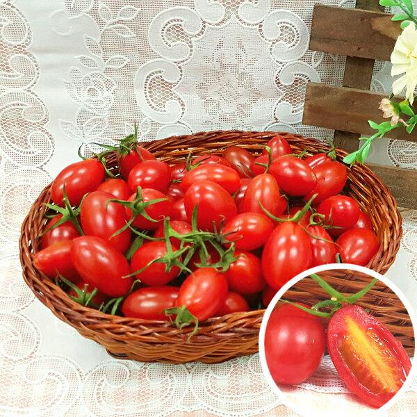 花?山水果 季節限定-玉女小蕃茄(3盒入)