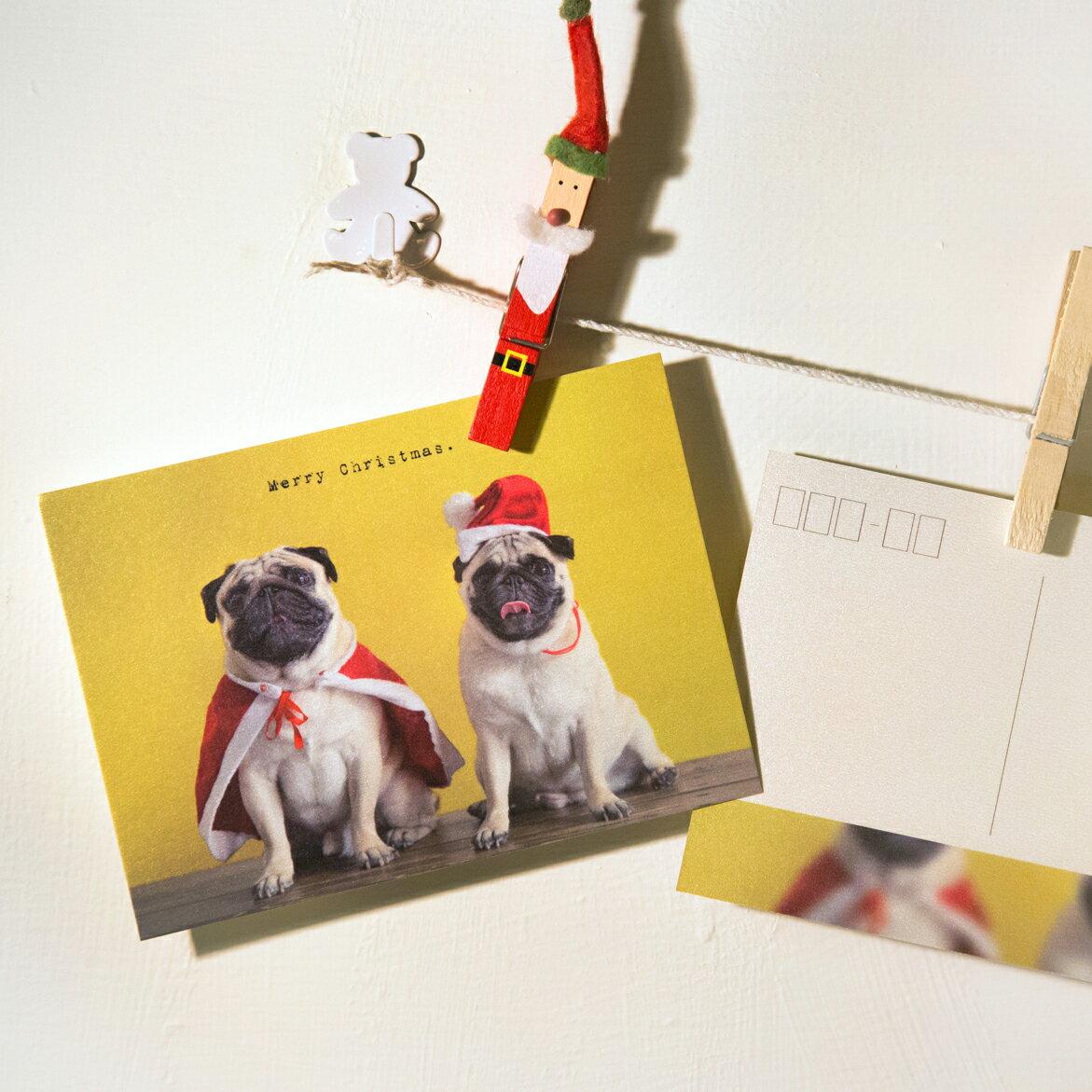 普萊森特|巴哥聖誕老公公明信片