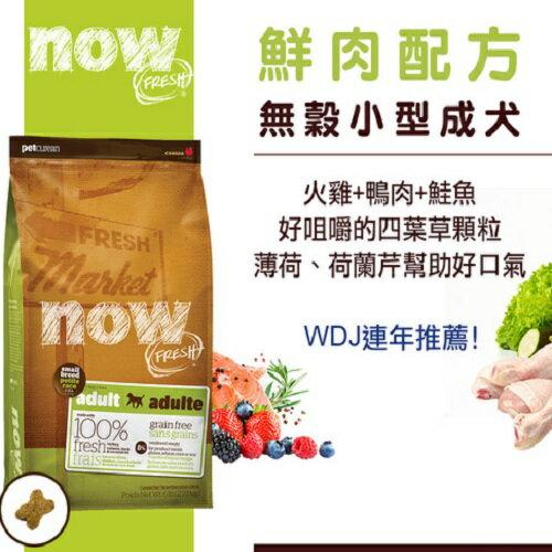 Now! 鮮肉無穀天然糧 [小型成犬配方] 6磅(2.72kg)