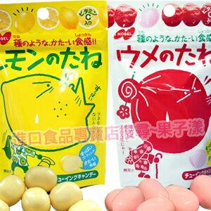日本NOBEL 諾貝爾 酸酸嚼糖 [JP314]