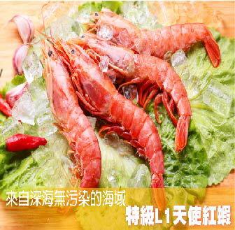 頂級天使紅蝦5尾/份
