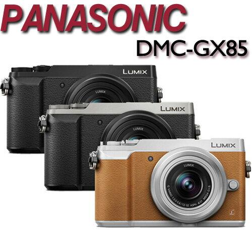 ~~送副電^(含盒內原電共2^) 吹球清潔組~Panasonic LUMIX DMC~GX