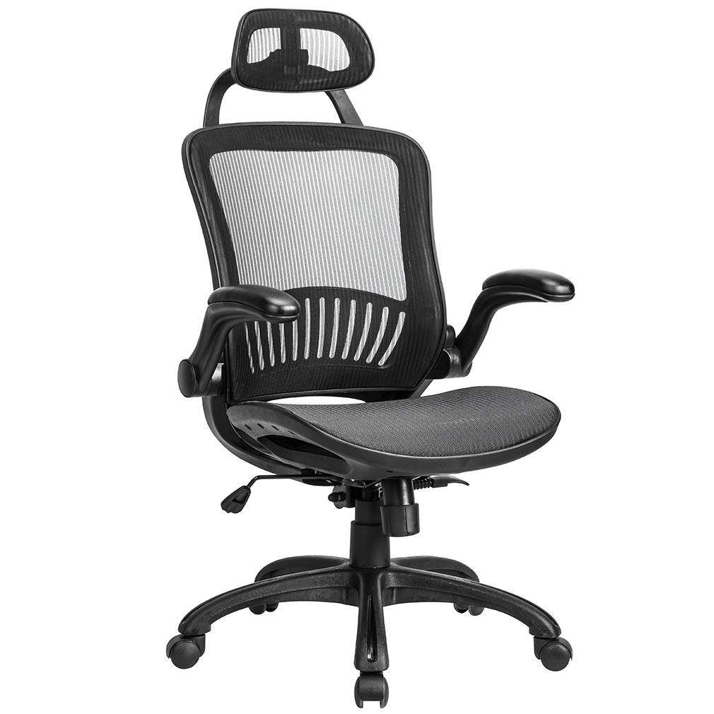 Fantastic Mesh Executive Chair High Back With Adjustable Headrest And Padded Flip Up Arms Gmtry Best Dining Table And Chair Ideas Images Gmtryco