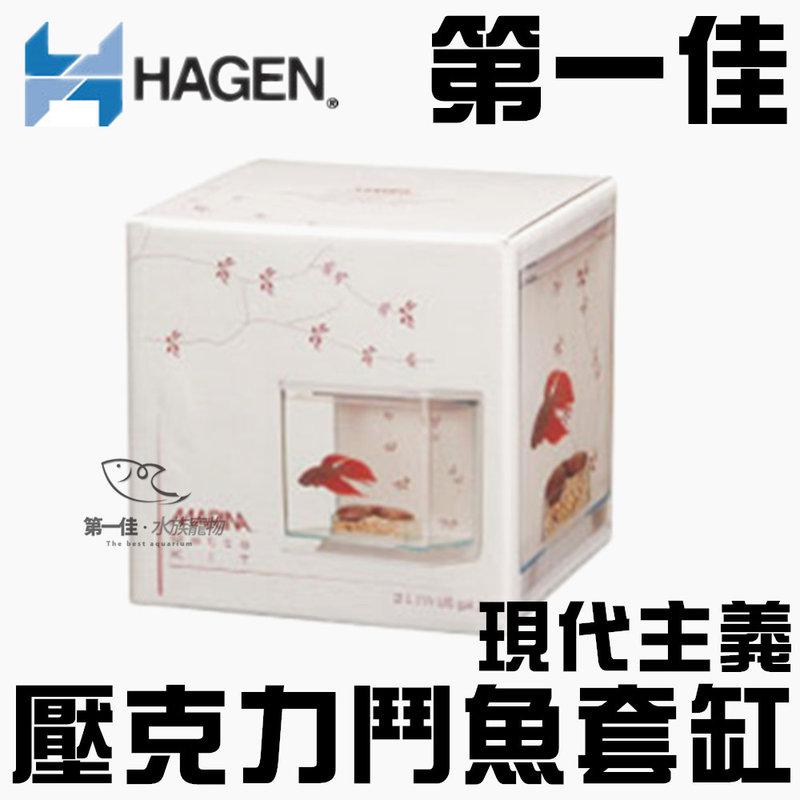 [第一佳 水族寵物] 加拿大HAGEN赫根 壓克力鬥魚套缸/盒 孔雀(含飼料.藥水.砂) 現代主義 13402 免運