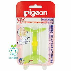 日本 貝親 Pigeon 第一代 綠色小花 固齒器