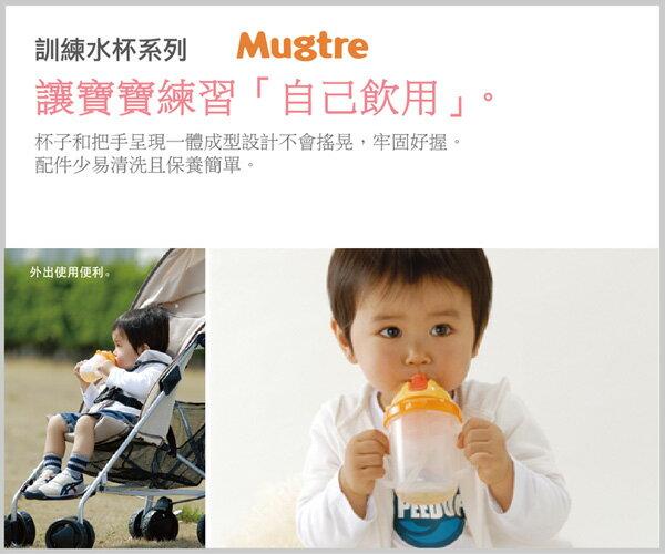 Richell利其爾 - Mugtre嬰童吸管水杯/莫哭杯 200ml (橘) 1