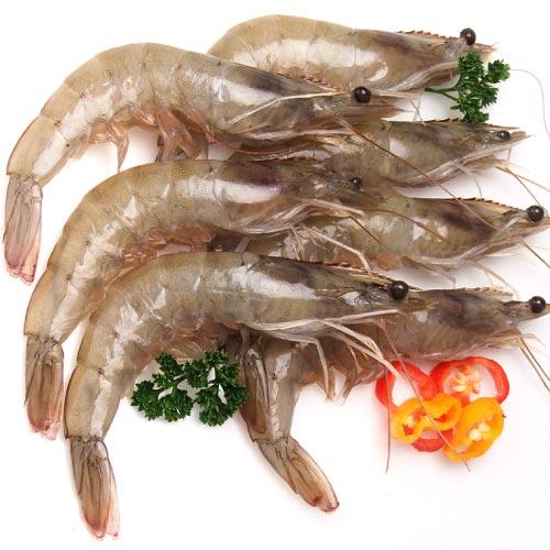 【築地藏鮮】南美鮮凍白蝦 (1.2Kg / 盒)1盒約60~70尾  |  網購生鮮第一選!宅配生鮮團購 進口牛肉 零售到批發就找築地藏鮮 0