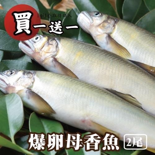 【築地藏鮮】宜蘭冷泉爆卵母香魚 200g/2尾 | 買一份送一份 | 總共4尾-平均一尾只要$84