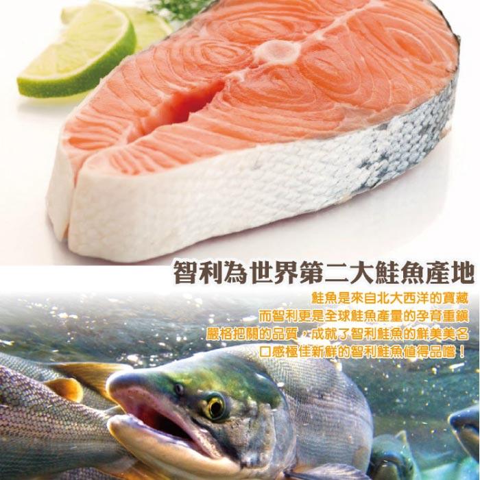 【築地藏鮮】厚切智利鮭魚 390克 / 片 (3入組 / 10入組 / 50入組)  |  免運到府 冷凍真空包裝 | 生鮮團購專區 | 4
