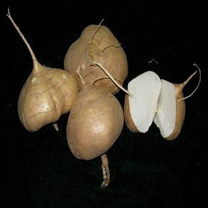 【臻美蔬果】涼薯