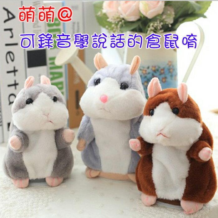 糖衣子輕鬆購【DZ0110】錄音倉鼠 錄音老鼠 學說話老鼠 模仿老鼠 哈姆太郎 模仿娃娃 學說話娃娃 兒童玩具
