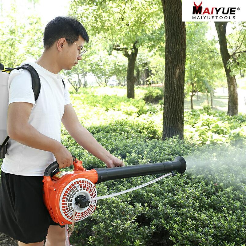 汽油彌霧機打農藥二沖程背負式園林果樹噴粉農用高壓消毒噴霧器 春季新品 618年中鉅惠