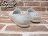 BEETLE PLUS 西門町專賣店 全新 NATIVE VERONA 水手鞋 超輕量 白奶油 SHELL WHITE GLM18-110 2