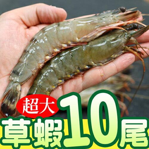 【築地一番鮮】鮮美大草蝦(10尾裝/盒)-任選
