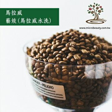 [微美咖啡]超值-1磅750元,藝妓Geisha(馬拉威水洗)咖啡豆, 全館滿500免運,新鮮烘培坊