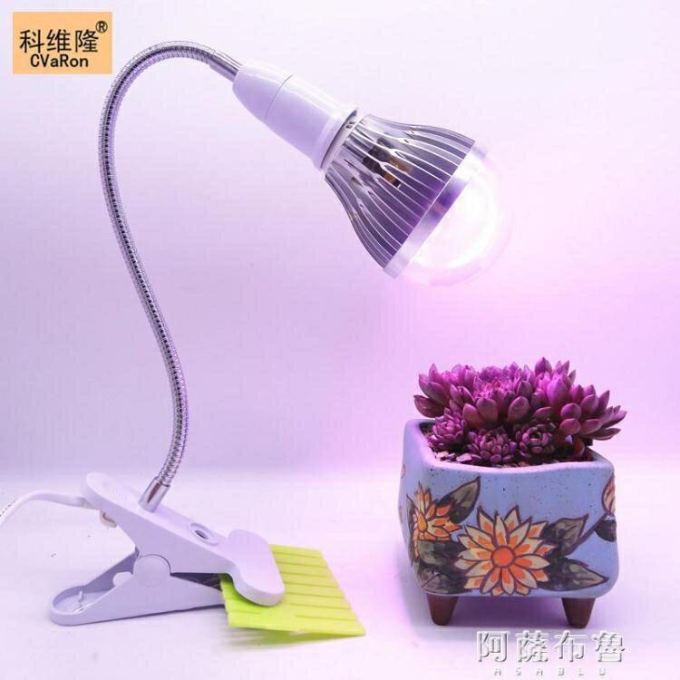 植物燈 多肉補光燈 上色全光譜LED植物生長燈室內花卉仿太陽光夾子款