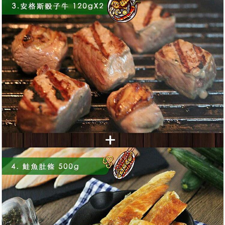 【免運】【陸霸王】103 戰神烤肉組8-10人露營 / 美食 / 下殺49折 6