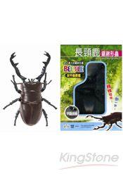 長頸鹿鋸鍬形蟲(甲蟲圖鑑1張)