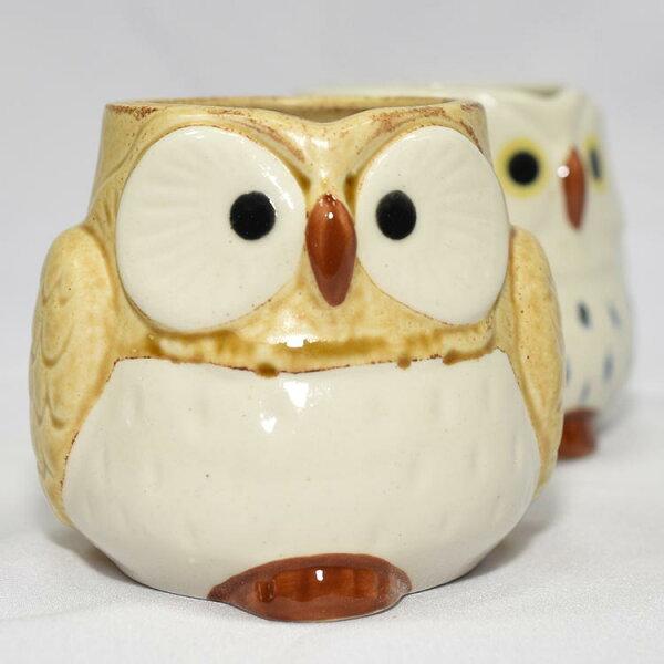 貓頭鷹陶瓷馬克杯日本製造黃色