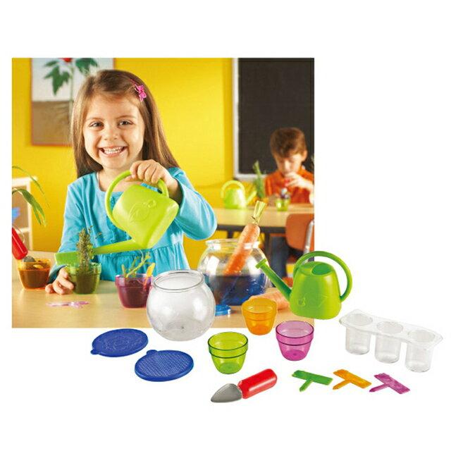 ~華森葳兒童教玩具~科學教具系列~植物生長組 N1~4784