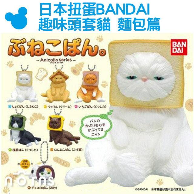 NORNS【日本扭蛋BANDAI趣味頭套貓 麵包篇】貓咪吐司套頭 轉蛋 吊飾 可愛Anicolla Series