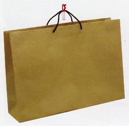 紙袋1K~10入~牛皮~棉把手 pbag~001