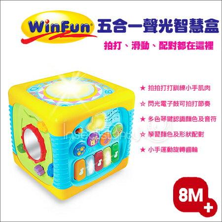 ✿蟲寶寶✿【香港WinFun】多種樂器玩法一次滿足 讓寶寶愛不釋手 五合一聲光智慧盒