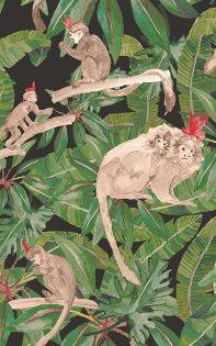綠色植物香蕉葉猴子TRIBUBrownMonkeysonBlackWallP-TRIB-Brown-01