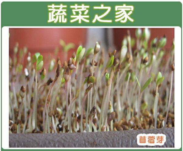 <br/><br/>  【蔬菜之家】J01.苜蓿(芽菜種子)種子7000顆<br/><br/>