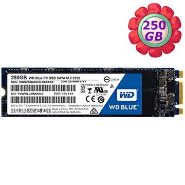WD Blue 250GB 250G M.2 SSD【WDS250G1B0B】2280 SATA 6Gb/s 固態硬碟
