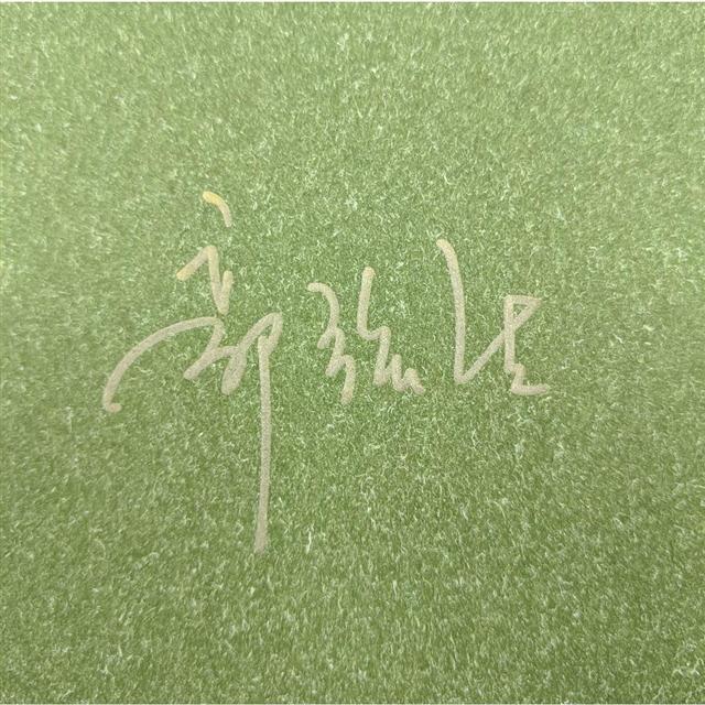 【預購】尋琴者限量典藏套組(精裝簽名版+郭強生油畫創作帆布袋) 4