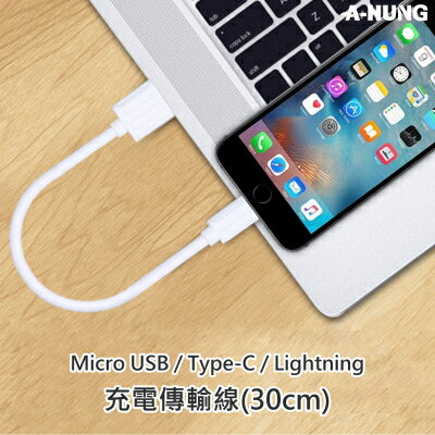 快速充電線 短線 30cm 傳輸線 Micro USB Type-C iPhone 7 6S Plus 5S 快充線