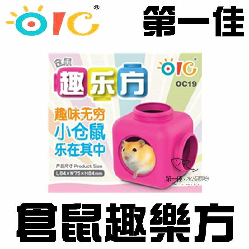 [第一佳水族寵物]倉鼠 樂趣芳 OC19