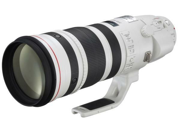 *兆華國際* Canon EF 200-400mm F4L IS USM Extender 1.4x 含稅價
